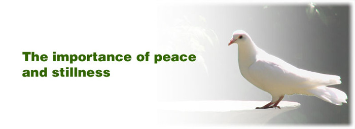 essay on importance of peace and development